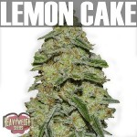 Lemon Cake-Text