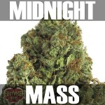 Midnight Mass- Text