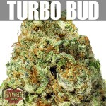 Turbo Bud-Text